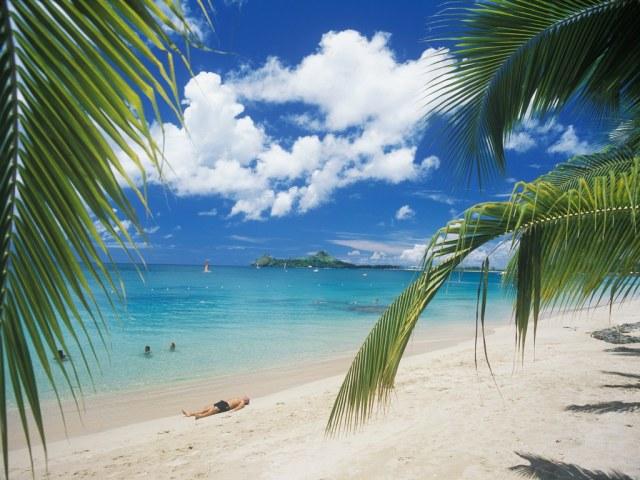 Winston Mcgill MD - Reduit Beach, St. Lucia